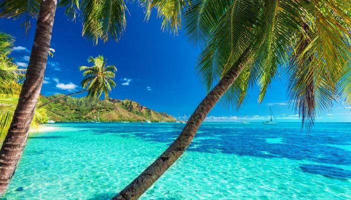 polynesiaisland